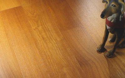 Parquet in Iroko: l'armonia dei pavimenti in legno
